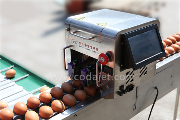جت پرینتر تخم مرغ | چاپ روی تخم مرغ